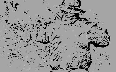 Metsästyskauden avajaiset 11.8.2018 Pahkamaalla